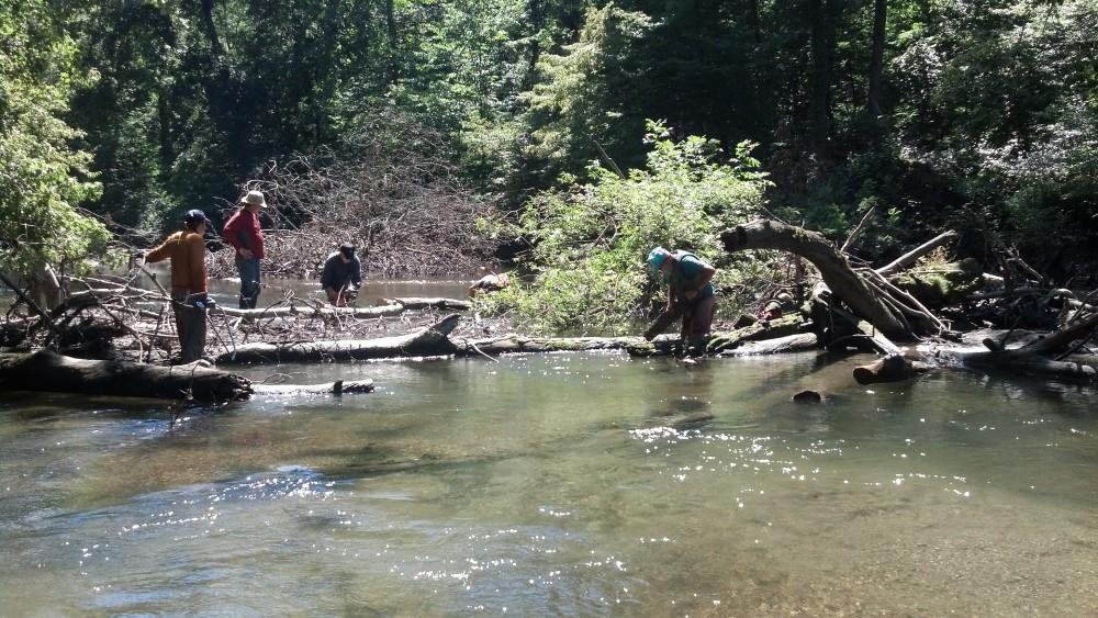 Fishkill Creek cleanup JCF Aug. 25 2013 _ 4