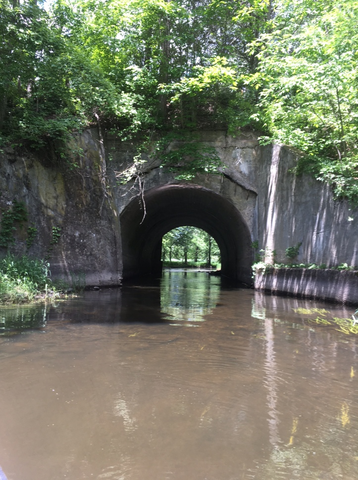 5. We continued under the old RR bridge to New Paltz Rd. finding only minor work.