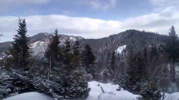 View of Jay Mountain from the Jay Ridge.