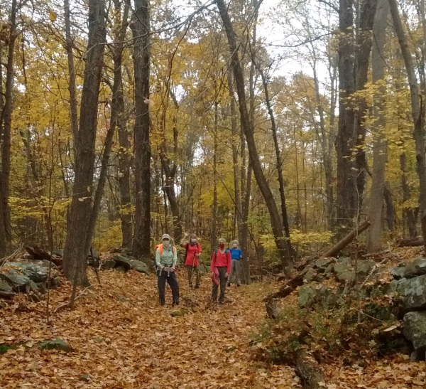 Amidst the autumn leaves in Fahnestock State Park.  Photo by Jean-Claude Fouere